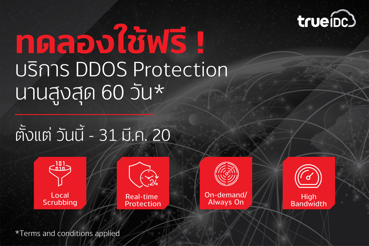 trueidc-ddos-protection-promotion